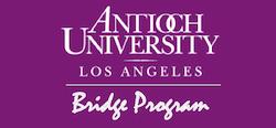 bridgeprogramlogo